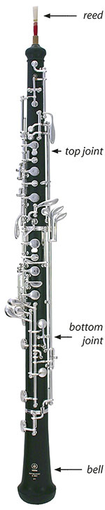 Oboe Care and Maintenance Sheet
